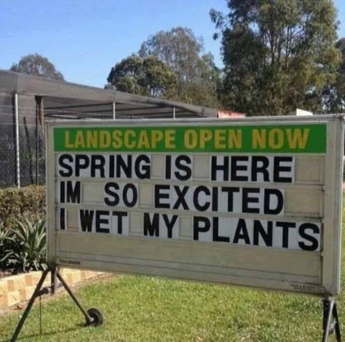 spring.jpg.d9b63be29d12666345253e388ed34c49.jpg