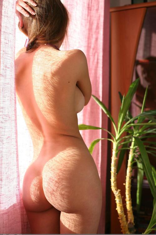 Ass_201116.jpeg