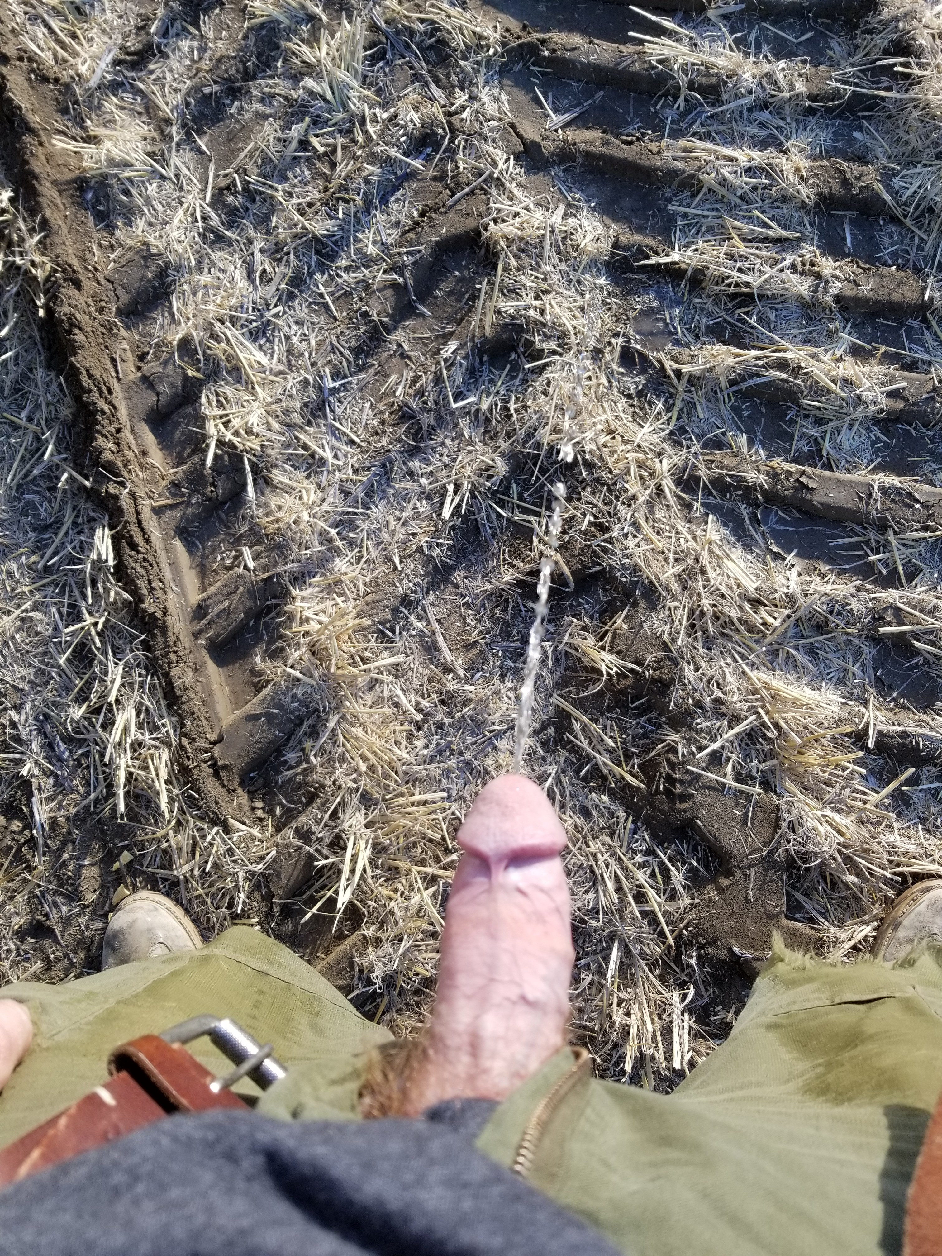 Peeing in a field - Men Peeing: Pictures, Videos & Stories