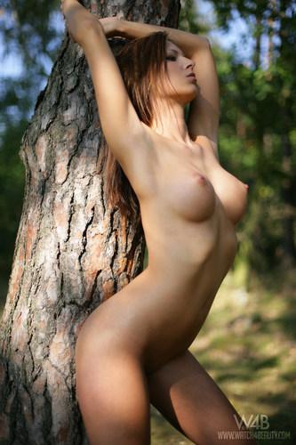 lusciousnet_bark_for_ilona_977363947.jpg