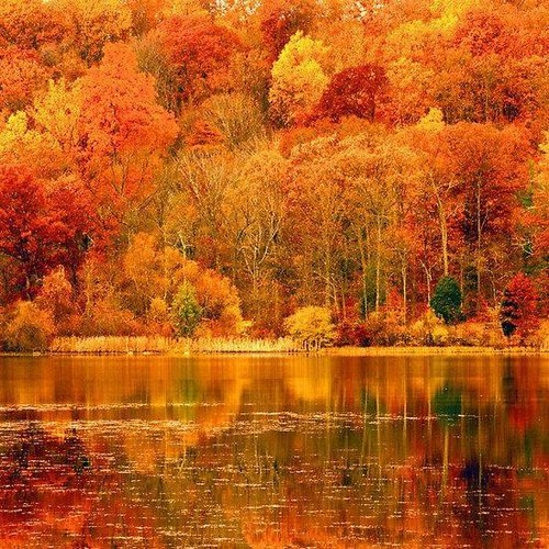 Awesome Autumn colors.jpg